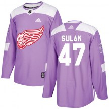Detroit Red Wings Men's Libor Sulak Adidas Authentic Purple Hockey Fights Cancer Practice Jersey