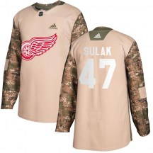 Detroit Red Wings Youth Libor Sulak Adidas Authentic Camo Veterans Day Practice Jersey